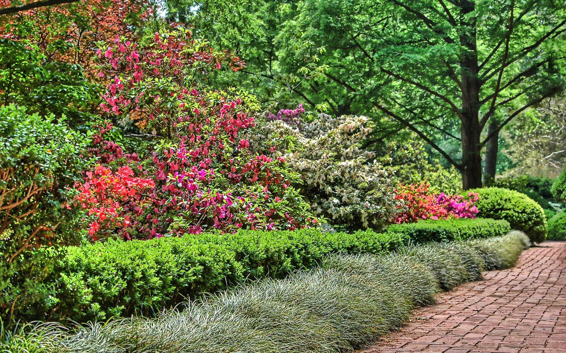 Galerie d inspiration jardin jardinerie dalhem li ge for Ecran de jardin belgique